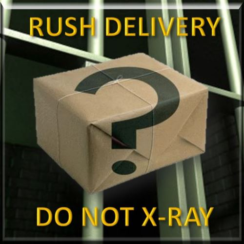 Picture of Suspicious Package Delivery